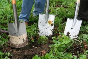 Einen Gartenteich selbst bauen mit Hilfe eines Fertigteich